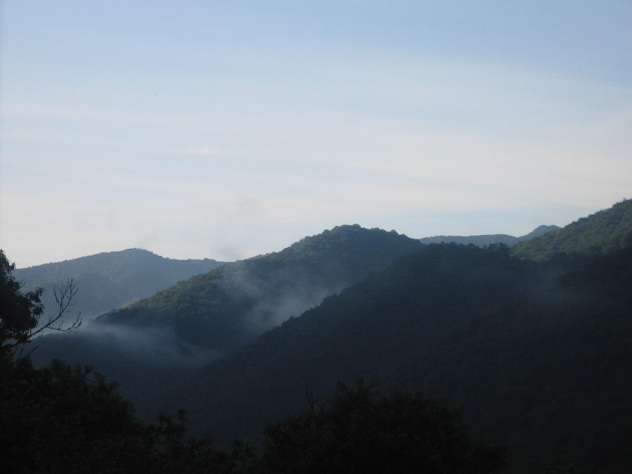 Niebla en los montes de Caso